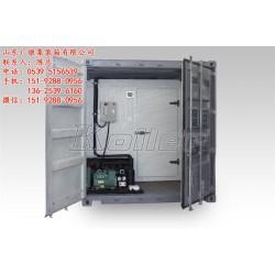 河东区冷藏集装箱|冷藏集装箱出售|广银集装