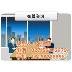 法律服务事务所,武昌法律服务,羚圣伟杰(查