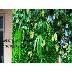 安顺仿真植物墙绿化室内外生态园林景观设计