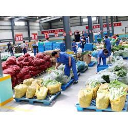蔬菜配送到家 东莞蔬菜配送公司哪家可靠