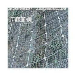 供应衡水畅销钢丝绳防护网 江苏钢丝绳防护