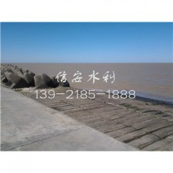 供绥芬河市水下模袋混凝土分公司》新闻报道