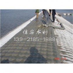 供乐陵市模袋混凝土工艺分公司》新闻报道&a