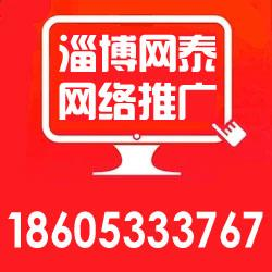淄博网泰科技(图)|滨州网络推广哪家专业|滨