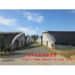 低价直供日光温室暖棚 新型日光温室大棚 陕西温室工程报价