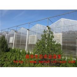 西安供应 阳光板温室大棚 阳光板温室建设价格 鑫华厂家报价