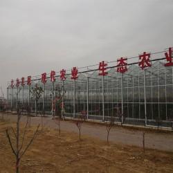 智能温室建设厂家、玻璃温室设计施工、大棚骨架加工安装