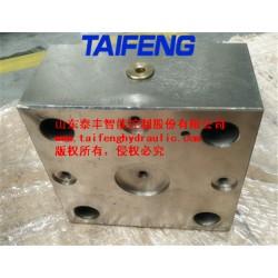 泰丰TLFA50DBU-7X型调压控制盖板