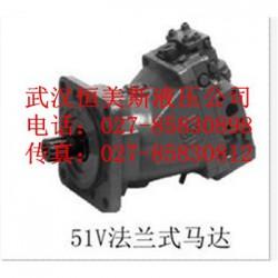 武汉恒美不二越马达SS-G01-C6S-R-D2-31