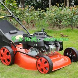 手推式草坪修剪机 公园草地除草机