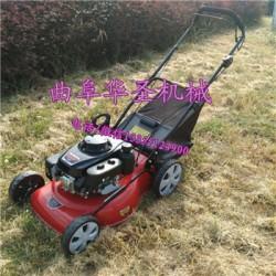 多功能草坪机 行走式草坪机 电动草坪机