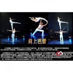 贵溪市寿宴活动策划公司专注于江西正九寿宴