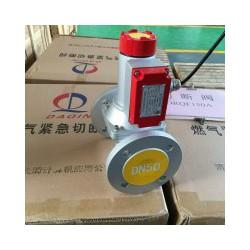 济南常青供应专业的便携式气体检测仪——潍