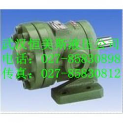 武汉恒美不二越马达SAN-100N-3