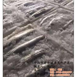普陀鲩鱼_ 中山市渔夫水产贸易_脆鲩鱼批发