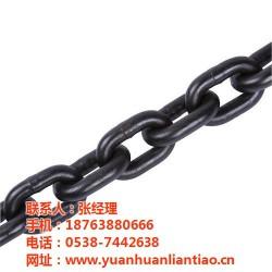 泰安市鑫洲机械(图)、起重链条生产厂家、韶